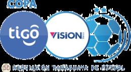 Paraguay - Primera División Paraguay - Primera División logo
