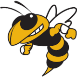 georgia-tech-yellow-jackets logo