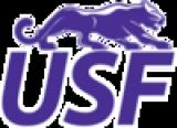 Sioux Falls Cougars logo